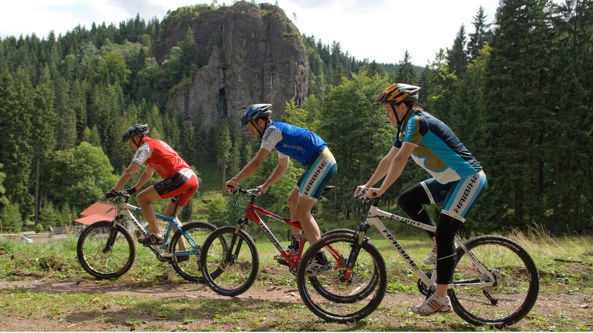 Mountainbike Gruppe bei Oberhof | © Tourist Information Oberhof