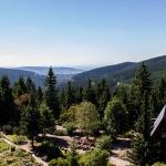 Blick Thüringer Wald Rennsteiggarten Oberhof