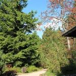 Rennsteiggarten Oberhof Rundweg Lernstation