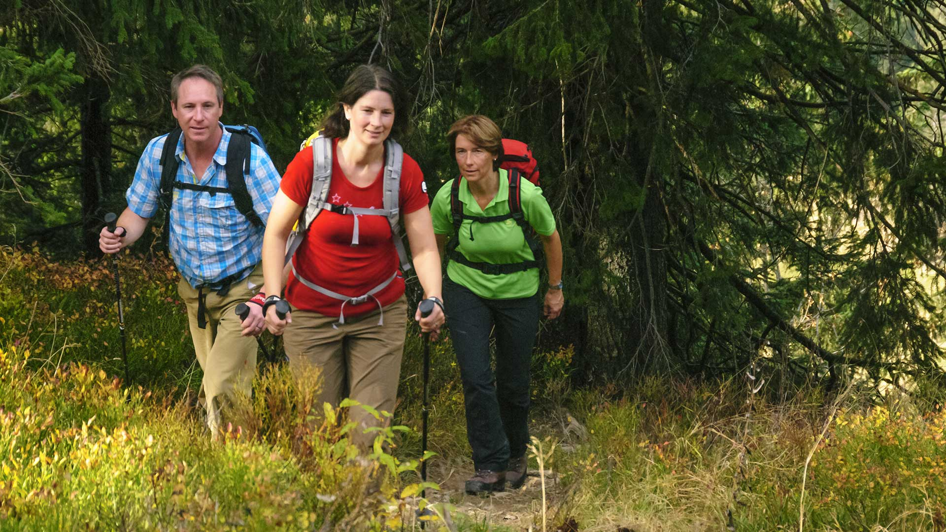 Wandergruppe bei einer Gruppenreise Oberhof | © ARochau - fotolia.com