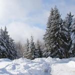 Winterwanderung in Oberhof | © Tourist Information Oberhof