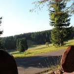 Wanderrastplatz Alte Golfwiese Oberhof | © Tourist Information Oberhof